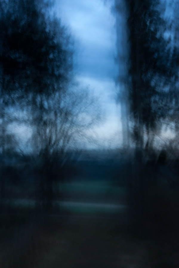 Waldspaziergang 17