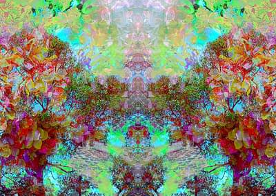 stanko colorful