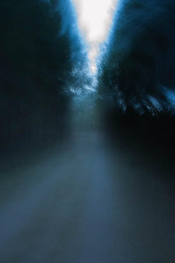 waldweg-lichtdunst